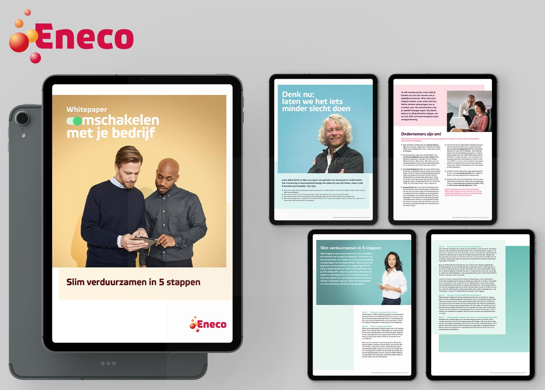 Whitepaper Eneco EnergieCoach